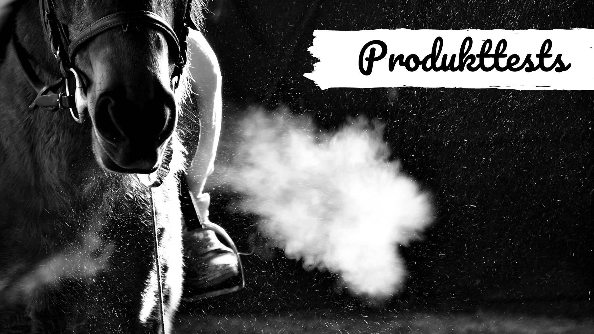 Pferdeblog mit Produkttests