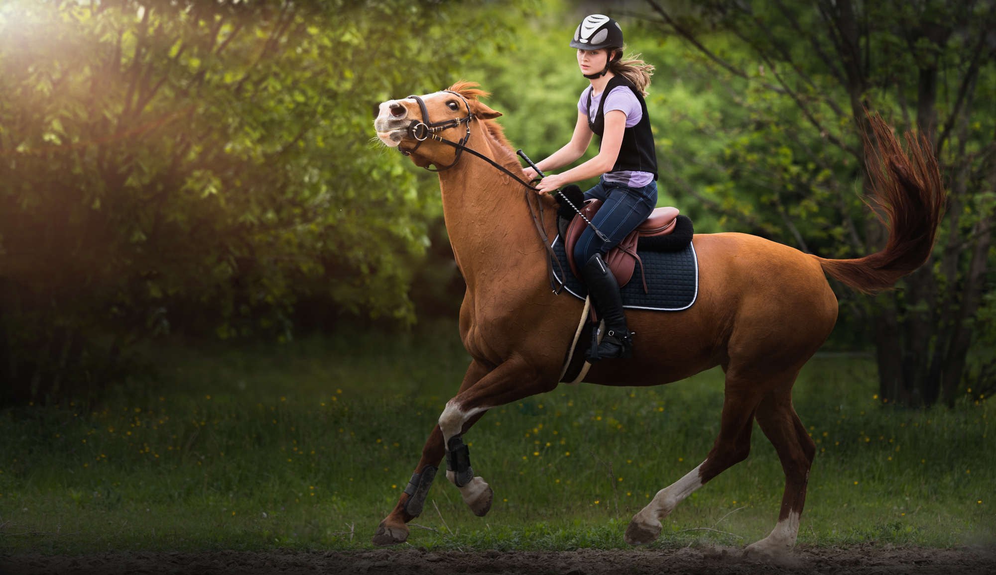 Young pretty girl riding a horse -  jumping over hurdle with in spring time