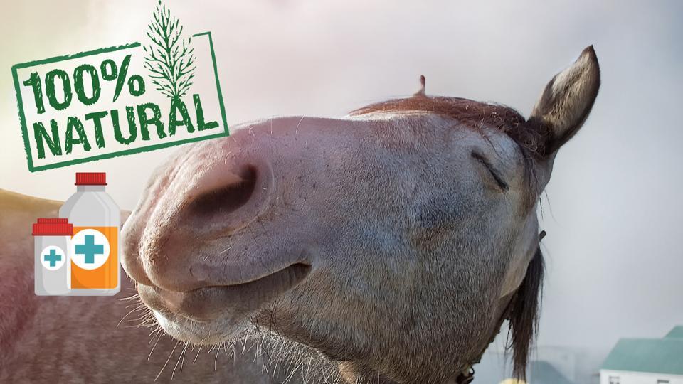 Natürliche Heilmittel Pferd